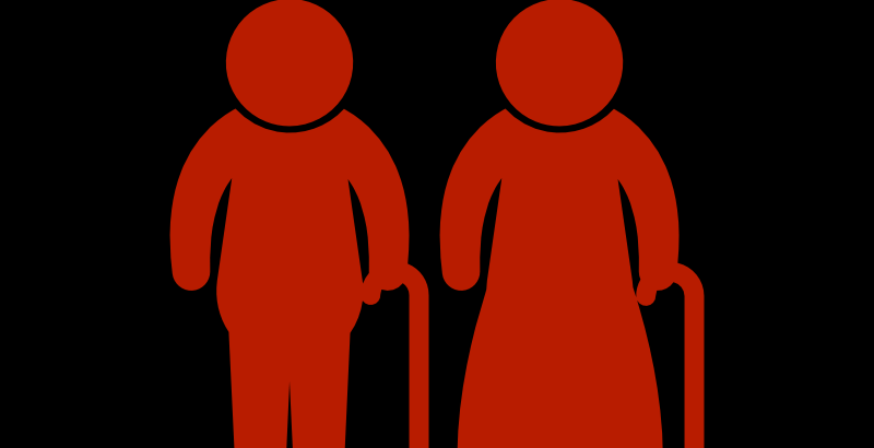 Elderly couple icon