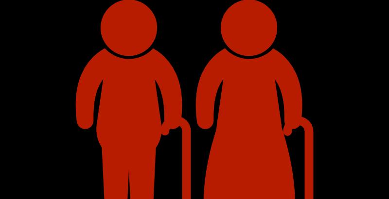 Elderly couple icon