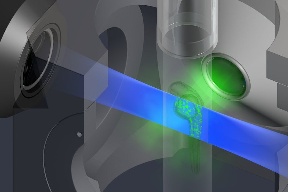 Light-sheet microscope principle