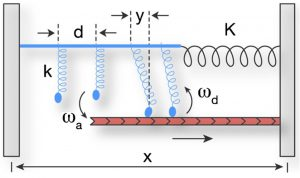 Half-sarcomere model