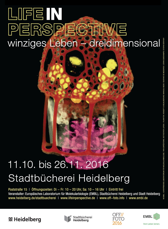 Heidelberg exhibition poster